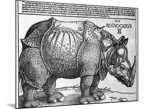 Rhinoceros, Print Given to Maximilian I by the King of Lisbon, 1515-Albrecht Durer-Mounted Giclee Print