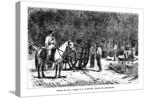 Harvesting the Coffee, Brazil, 19th Century-A de Neuville-Stretched Canvas Print