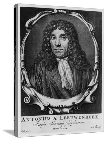 Antoni Van Leeuwenhoek, Dutch Pioneer of Microscopy, C1660-Abraham de Blois-Stretched Canvas Print