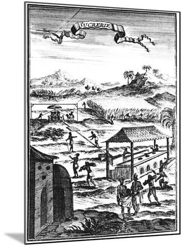Sugar Factory and Plantation in the West Indies, 1686-Allain Manesson Mallet-Mounted Giclee Print