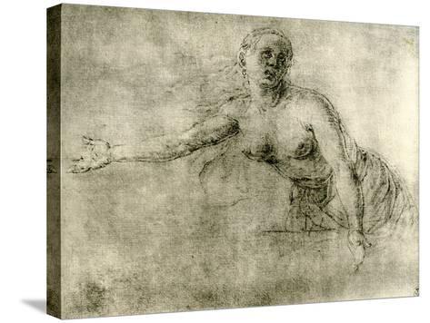 A Study, 1913-Albrecht Durer-Stretched Canvas Print