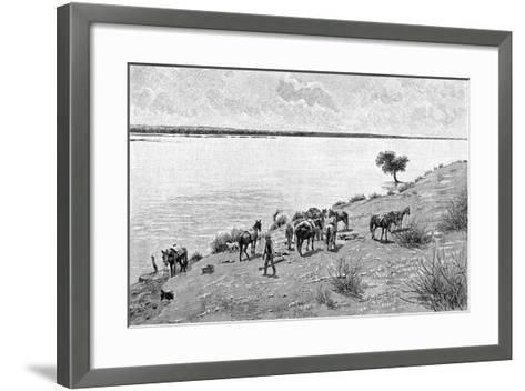 The Banks of the Rio Neuquen, Argentina, 1895-Alfred Paris-Framed Art Print