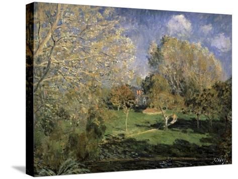 The Garden of Monsieur Hosched? in Montgeron, 1881-Alfred Sisley-Stretched Canvas Print