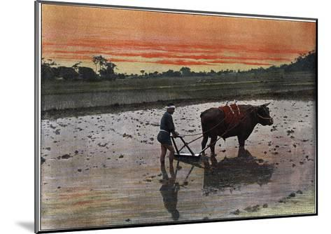 Preparation of a Rice Plantation in Japan, C1890-Charles Gillot-Mounted Giclee Print