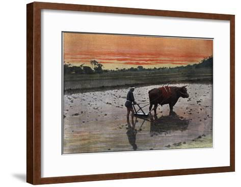 Preparation of a Rice Plantation in Japan, C1890-Charles Gillot-Framed Art Print