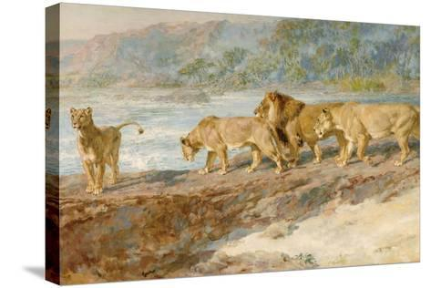 On the Bank of an African River, 1918-Briton Riviere-Stretched Canvas Print