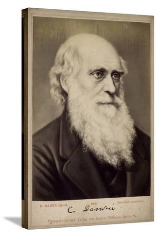Charles Darwin, British Naturalist, C1860S-C1870S-Ernst Hader-Stretched Canvas Print