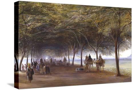 The Road to the Pyramids at Giza, C1873-Edward Lear-Stretched Canvas Print