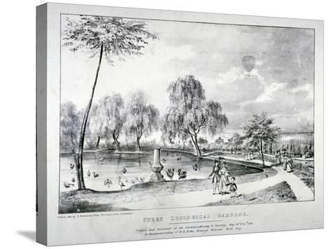 Surrey Zoological Gardens, Southwark, London, 1836-F Alvey-Stretched Canvas Print