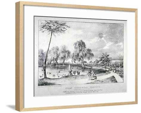 Surrey Zoological Gardens, Southwark, London, 1836-F Alvey-Framed Art Print