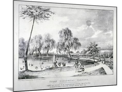 Surrey Zoological Gardens, Southwark, London, 1836-F Alvey-Mounted Giclee Print