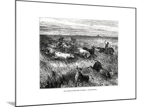 Livestock, Los Llanos, Venezuela, 19th Century-Edouard Riou-Mounted Giclee Print
