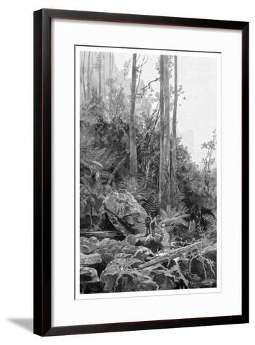 A Gully in the Blue Mountains, Australia, 1886-Frederic B Schell-Framed Art Print