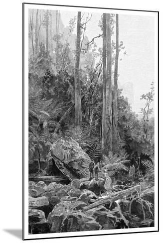 A Gully in the Blue Mountains, Australia, 1886-Frederic B Schell-Mounted Giclee Print