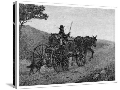 A Colac Rabbit Trapper, 1886-Frederic B Schell-Stretched Canvas Print