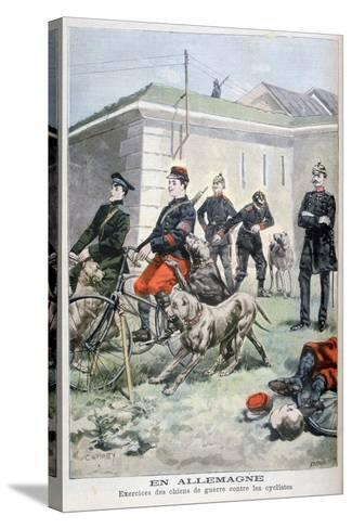 Training Army Dogs to Attack Cyclists, Germany, 1897-F Meaulle-Stretched Canvas Print