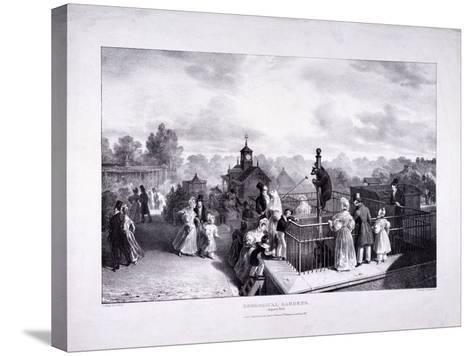 Zoological Gardens, Regent's Park, Marylebone, London, 1835-George Scharf-Stretched Canvas Print