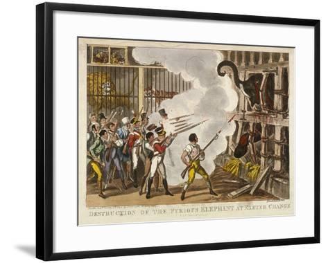 Destruction of the Furious Elephant at Exeter Change, 1826-George Cruikshank-Framed Art Print
