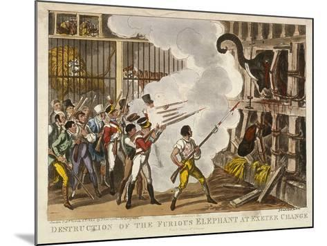 Destruction of the Furious Elephant at Exeter Change, 1826-George Cruikshank-Mounted Giclee Print