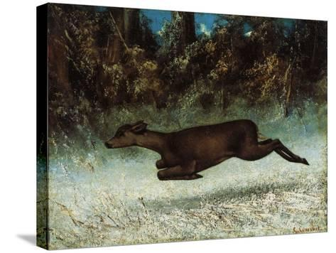Doe Leaping, 19th Century-Gustave Courbet-Stretched Canvas Print