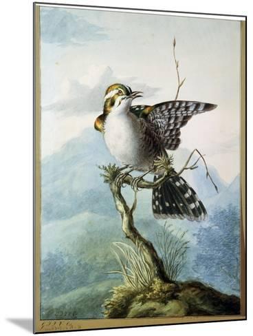 A Little Bird, 1798-Georgius Jacobus Johannes van Os-Mounted Giclee Print