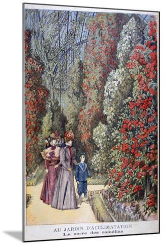 The Greenhouse of the Camellias, Zoological Gardens, Paris, 1897-Henri Meyer-Mounted Giclee Print