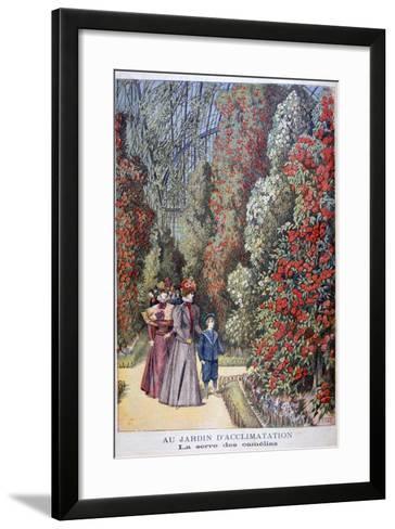 The Greenhouse of the Camellias, Zoological Gardens, Paris, 1897-Henri Meyer-Framed Art Print