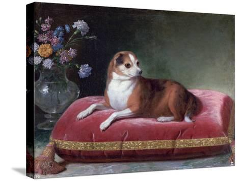 The Bitch on a Cushion, C1694-1735-Jean Ranc-Stretched Canvas Print