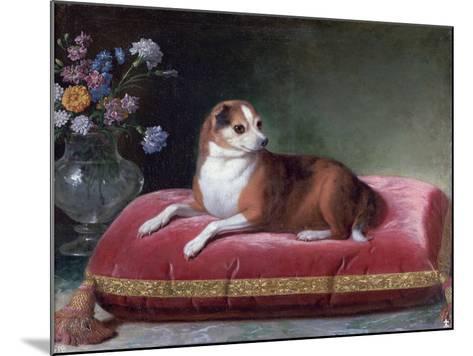 The Bitch on a Cushion, C1694-1735-Jean Ranc-Mounted Giclee Print