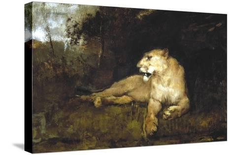 A Lioness, C1867-1910-John Macallan Swan-Stretched Canvas Print