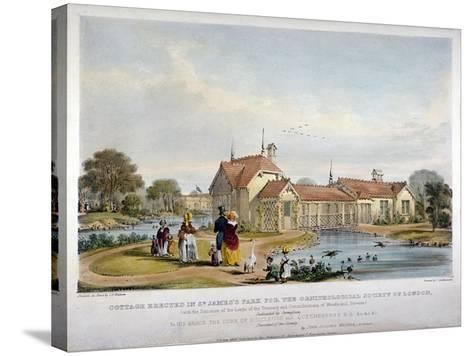 Cottage Erected in St James's Park for the Ornithological Society of London, Westminster, 1844-John Burges Watson-Stretched Canvas Print