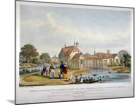Cottage Erected in St James's Park for the Ornithological Society of London, Westminster, 1844-John Burges Watson-Mounted Giclee Print