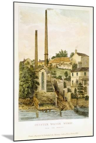 Chester Water Works, from the Fields, 1852-John Romney-Mounted Giclee Print