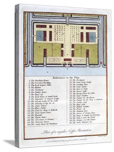 Plan of a Regular Coffee Plantation, 1813-John Gabriel Stedman-Stretched Canvas Print
