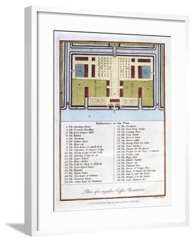 Plan of a Regular Coffee Plantation, 1813-John Gabriel Stedman-Framed Art Print
