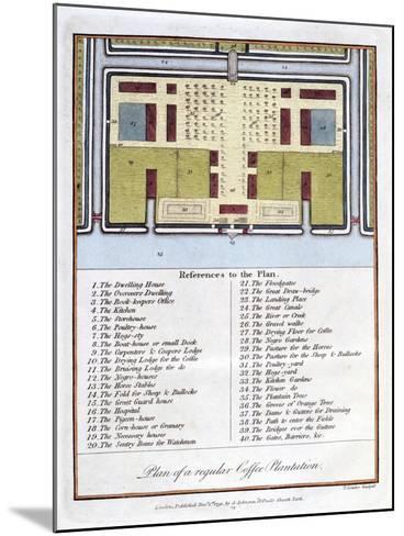 Plan of a Regular Coffee Plantation, 1813-John Gabriel Stedman-Mounted Giclee Print