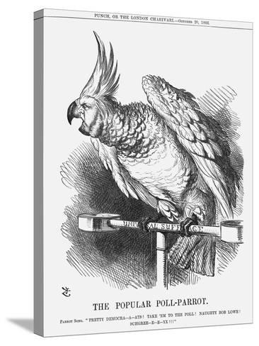 The Popular Poll-Parrot, 1866-John Tenniel-Stretched Canvas Print