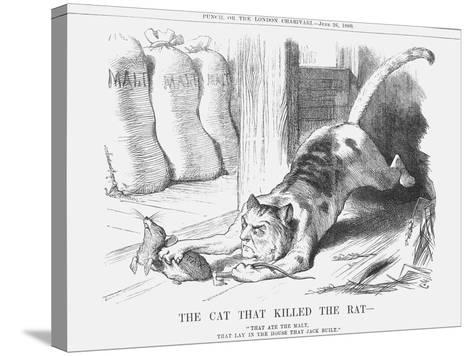 The Cat That Killed the Rat, 1880-Joseph Swain-Stretched Canvas Print