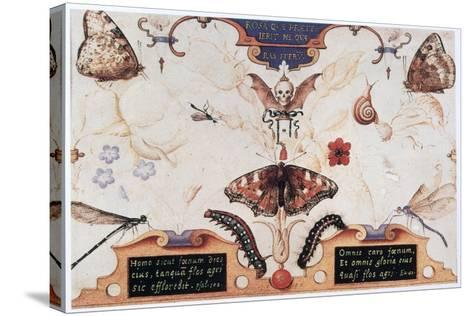 Diptych with Flowers and Insects, 1591-Joris Hoefnagel-Stretched Canvas Print