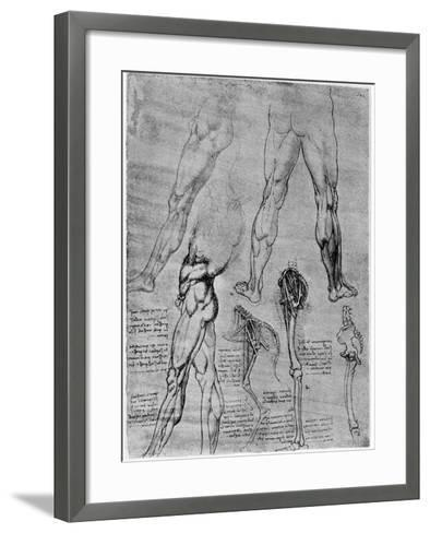Studies in Comparative Anatomy, 1506-1507-Leonardo da Vinci-Framed Art Print
