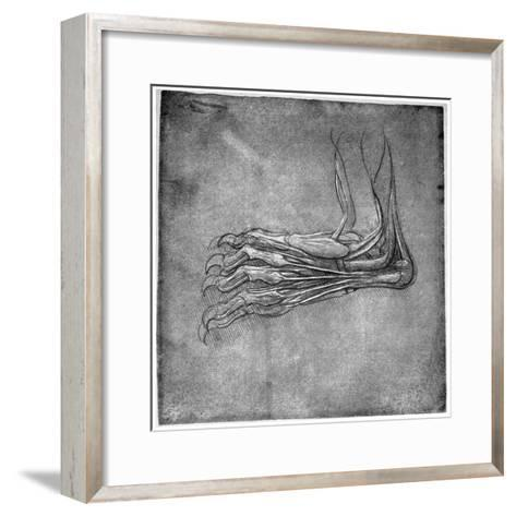 Muscles and Sinews in a Foot, Possibly of a Hare, Late 15th or Early 16th Century-Leonardo da Vinci-Framed Art Print