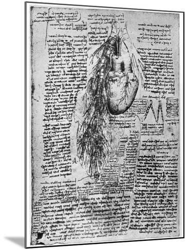 Study of the Heart and the Bronchial Arteries, Late 15th or Early 16th Century-Leonardo da Vinci-Mounted Giclee Print