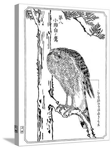 A Hawk, 1898-Kawanabe Kyosai-Stretched Canvas Print