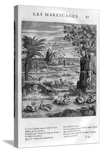 Marsh, 1615-Leonard Gaultier-Stretched Canvas Print