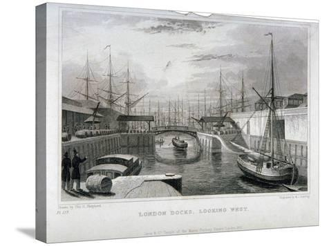 View of London Docks Looking West, Wapping, 1831-MJ Starling-Stretched Canvas Print