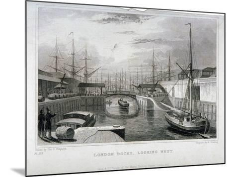 View of London Docks Looking West, Wapping, 1831-MJ Starling-Mounted Giclee Print