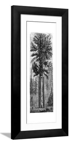Yosemite National Park, California, 19th Century-Paul Huet-Framed Art Print