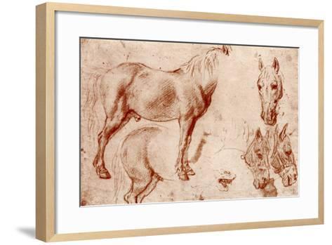 Studies of Horses, 1913-Peter Paul Rubens-Framed Art Print