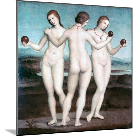 The Three Graces, 1504-1505-Raphael-Mounted Giclee Print
