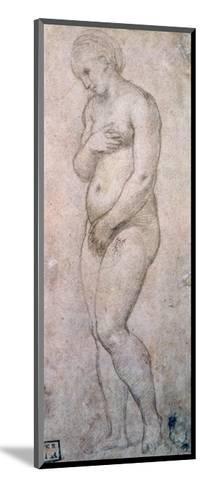 Study of Venus, C1500-1520-Raphael-Mounted Giclee Print